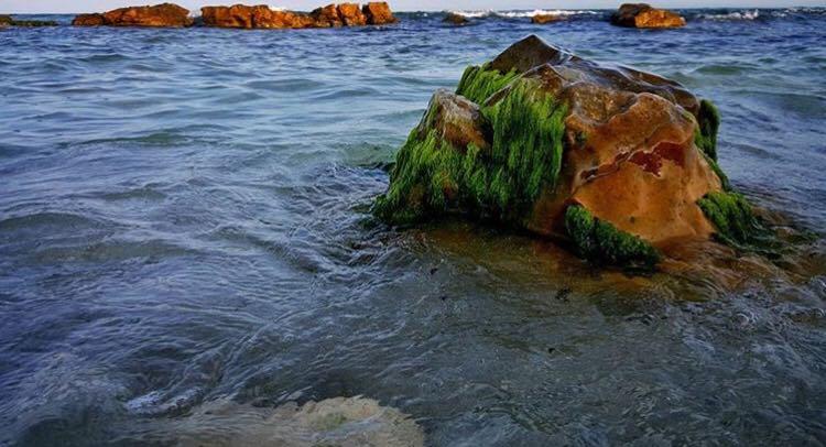 Plajă secretă pe litoralul românesc