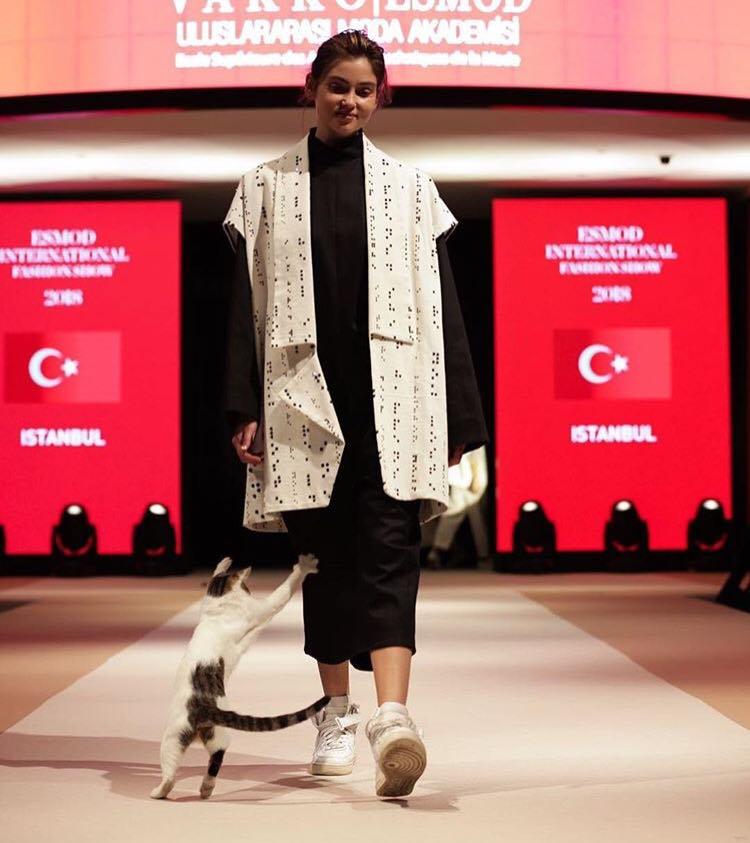O pisică a devenit celebră după ce a defilat pe podium şi a atacat fotomodelele