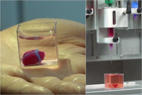 Prima inimă vascularizată, realizată cu o imprimantă 3D